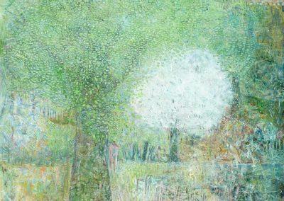 Træer og forår